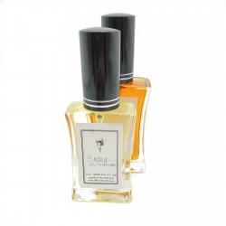 Notas olfativas que equivalen a  Pure XS de Paco Rabanne   001