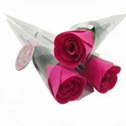 Rosa de Jabón